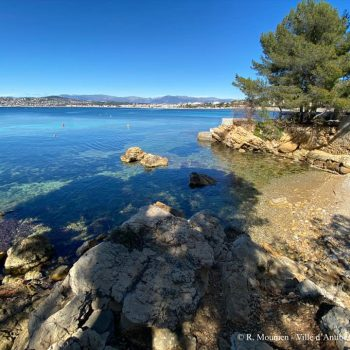 Learn French in Antibes