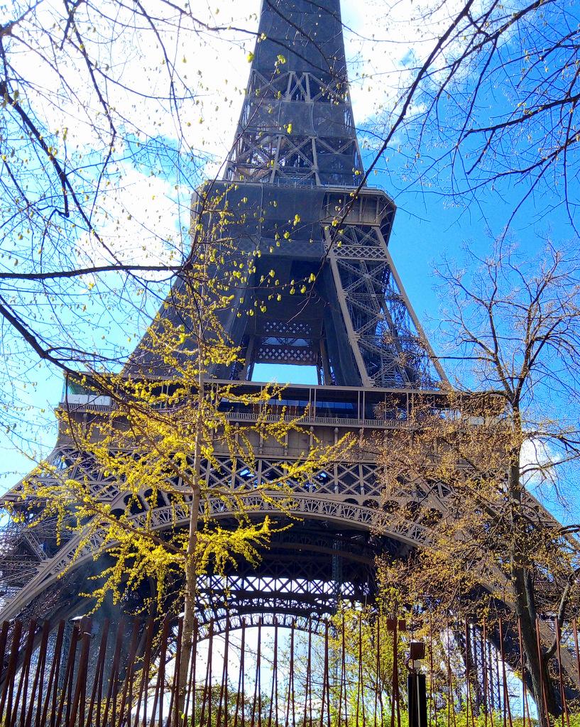 l'école ACCORD Tour Eiffel (1)
