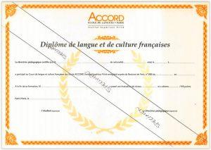 Why take the Diplôme de Langue et Culture Françaises